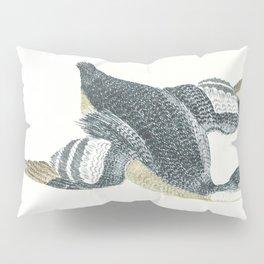 Duck by Johan Teyler (1648-1709) Pillow Sham