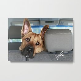 Tanner In the Backseat Metal Print