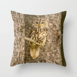 Perched Tawny Owl Throw Pillow