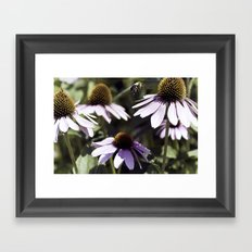 Bee-utiful Framed Art Print