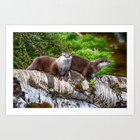 otters Art Prints featuring European Otters by Chris Thaxter