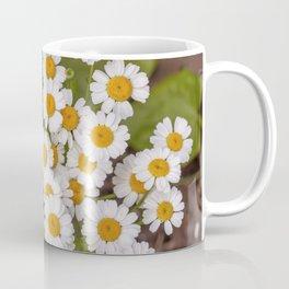 Detail on a Bush of Feverfew Coffee Mug