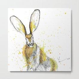 Jack Rabbit II Metal Print