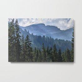 Into the woods.  Lauterbrunnen Valley. Alps. Switzerland Metal Print