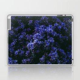 NIGHTBRISTLE Laptop & iPad Skin