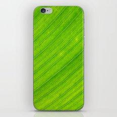 banana leaf iPhone & iPod Skin