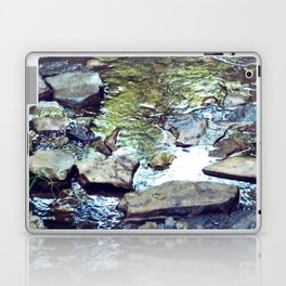 Stepping Stones Laptop & iPad Skin