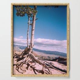 Long Tree Serving Tray