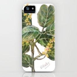 Almug Tree, pastel drawing iPhone Case