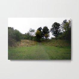 Woodland Trail Metal Print