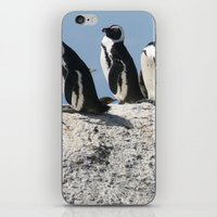 south africa iPhone & iPod Skins featuring Penguins in South Africa by NinjaGlue