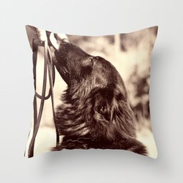 The love of a dog to man Throw Pillow