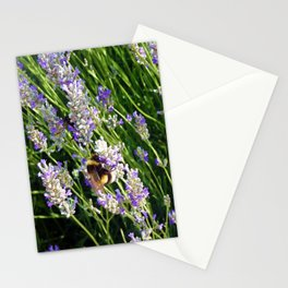 Lavender Bumble Bee in Turkey Stationery Cards