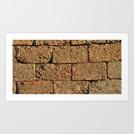 old wall of cinder blocks Art Print