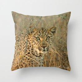 Ntsumi Throw Pillow