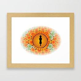 Snake Eye Framed Art Print