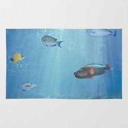 Hawaiian Waters Fish Rug
