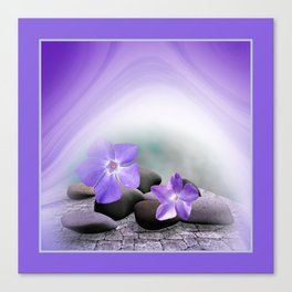 spring is announced -3- Canvas Print