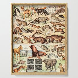Cute Animals // Fourrures by Adolphe Millot XL 19th Century Science Textbook Diagram Artwork Serving Tray