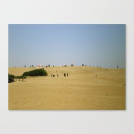 Gliding the Dunes Canvas Print