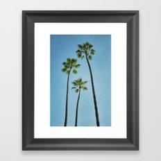 Three Palms Framed Art Print