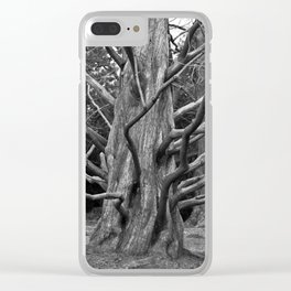 Bizarre Poetry Clear iPhone Case