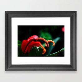 Botanical Flower Framed Art Print