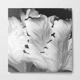 Fine Art Noir Ivory Alabaster Leaves Metal Print