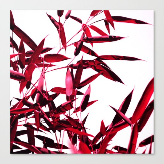 red bamboo abstract I Canvas Print