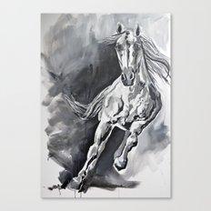 Tonka Canvas Print