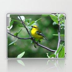 Blue-winged Warbler Laptop & iPad Skin