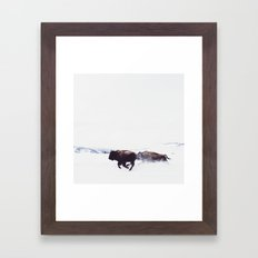Wild Bison Running in Winter Framed Art Print