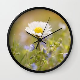 Daisy and court- Daisies Flowers Flower Meadow Spring Wall Clock
