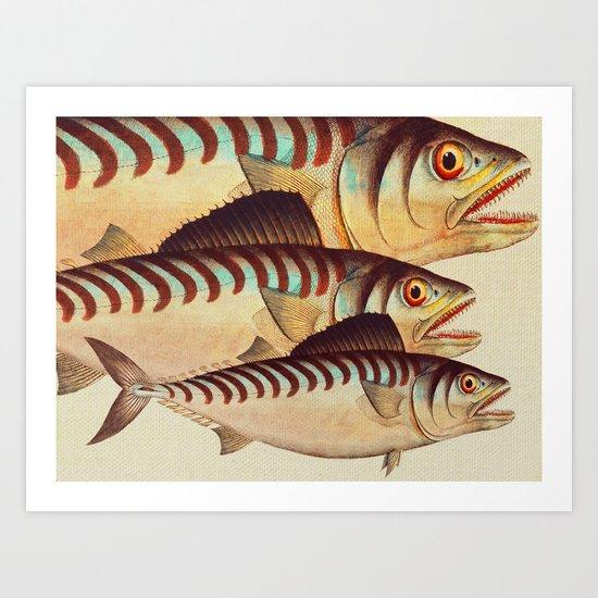Fish Classic Designs 8 Art Print
