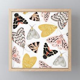 Moth's Diverse Beauty Pattern Framed Mini Art Print