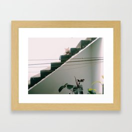 vie Framed Art Print