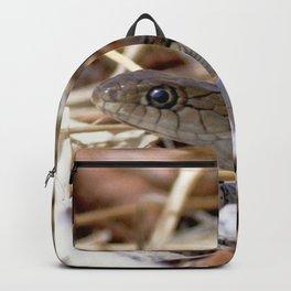 Watercolor Snake, Western Garter Snake 02, Estes Park, Colorado Backpack