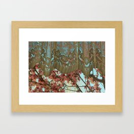 Peach Blossoms and Lace Framed Art Print