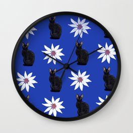 Cornish Rex Cat - Daisy Blue Wall Clock