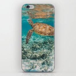Turtle ii iPhone Skin