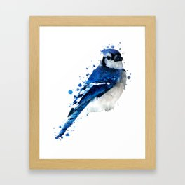 Watercolor blue jay bird Framed Art Print