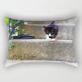 Carpe Diem. Rectangular Pillow