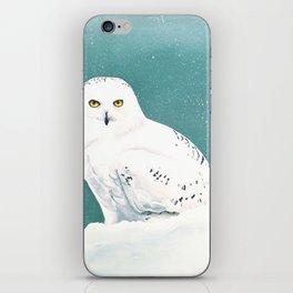 Arctic Eyes iPhone Skin