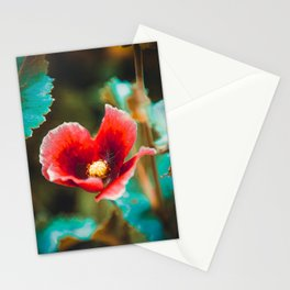 Red poppy flower, close-up Stationery Cards