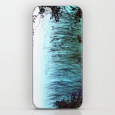 Reflective Tranquility iPhone & iPod Skin