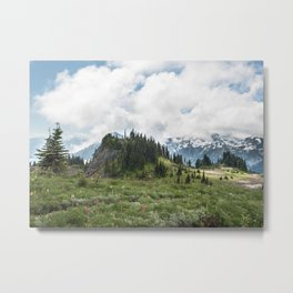 Mountains and Wildflowers Skyline Trail Metal Print