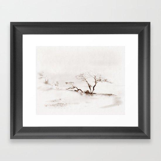 Scots Pine Sepia Framed Art Print