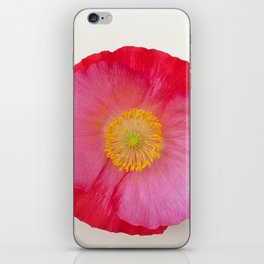 Poppy Bright Pink on White Fine Art Photograph iPhone Skin