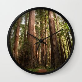 Redwood Forest Photography, Northern California Humboldt County Art, Magical Enchanted Woodland, Landscape Home Decor, Coastal Redwoods Wall Clock