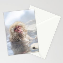 Snow Monkey Hot Springs Stationery Cards